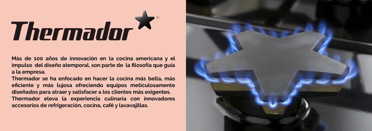 termodor-3